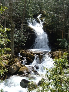 Waterfall in Great Smoky Mountains National Park (North Carolina, USA) Photo by Mark Ellison