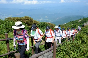 A hiking excursion in the forests of the Republic of Korea Photo courtesy Dr. Shin