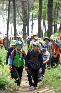 People enjoying the forests of South Korea. Photo courtesy Dr. Shin