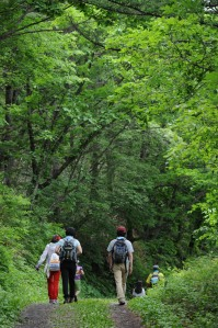 Enjoying a hiking excursion in the Republic of Korea Photo courtesy Dr. Shin