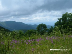 View from Siler's Bald on the Appalachian Trail (North Carolina).  Photo by Mark Ellison