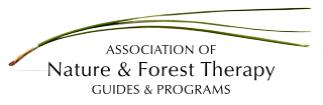 anft logo